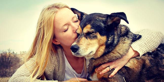 assurance chien formule Zen